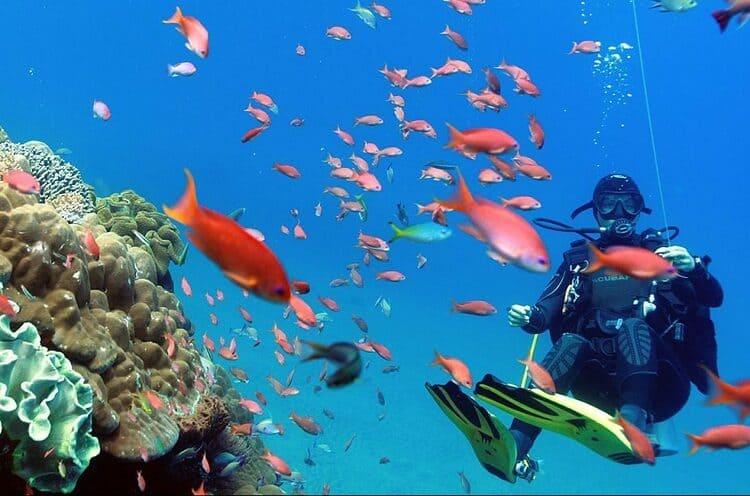 лучшие пляжи для снорклинга на Бали