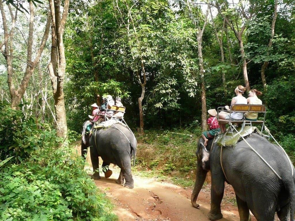 выбрать экскурсию в Таиланд