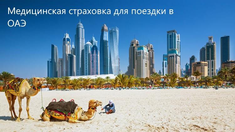 как выбрать где отдохнуть в Эмиратах