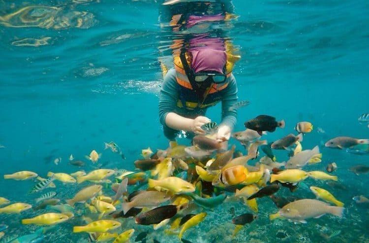 острова для занятий снорклингом на Бали