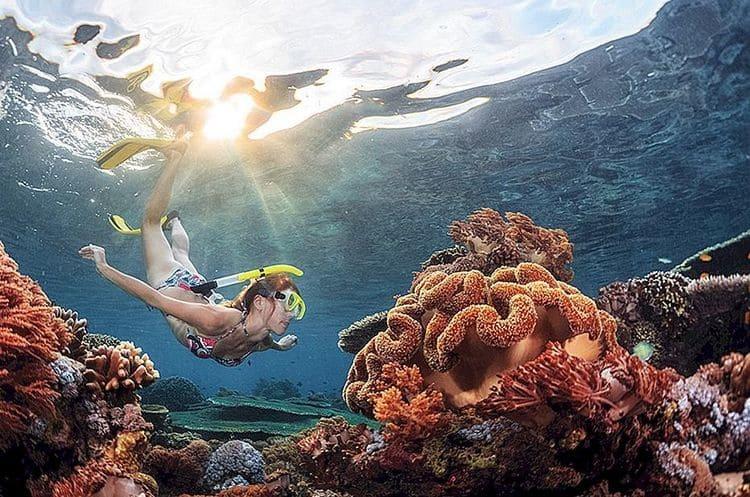 заняться снорклингом на Бали