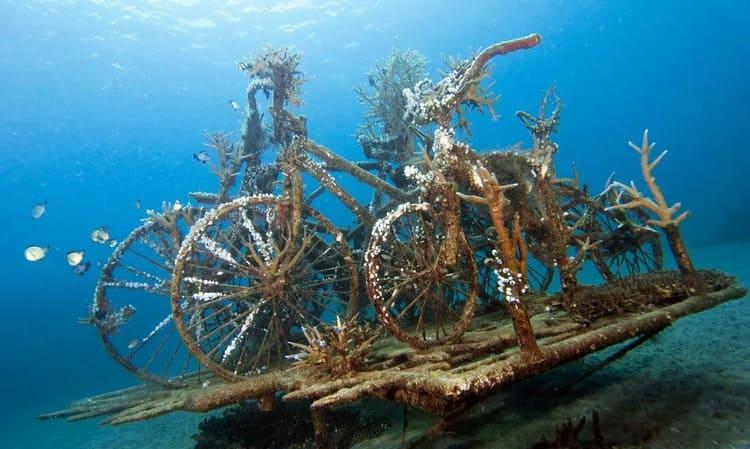 места для снорклинга на Бали
