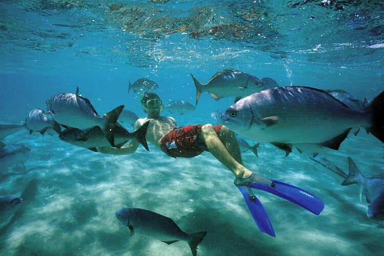 коралловые рифы снорклинг на Бали