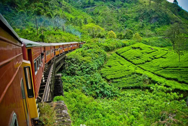 самостоятельное путешествие в Шри-Ланку